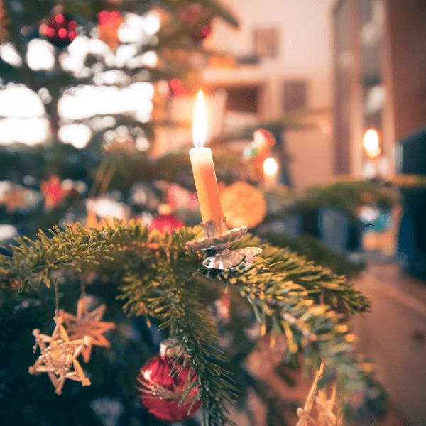 Vánoční stromeček dnes k Vánocům neodmyslitelně patří. Každý máme ten svůj doma, velké vánoční stromy zdobí snad každé náměstí, míjíme je v i obchodech, jsou zkrátka k nepřehlédnutí. Mohlo by […]