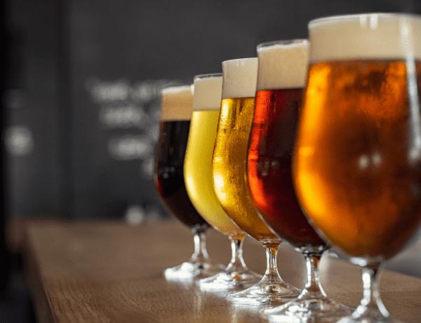Debata: Proč pije celé Česko?