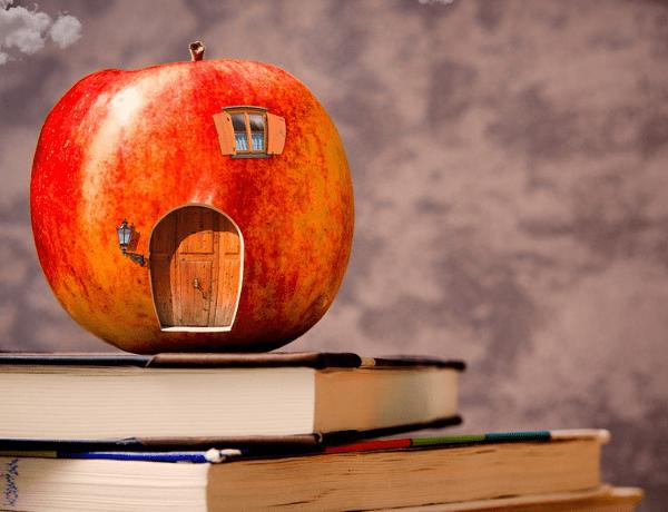 Podnětné školní prostředí, relaxace, ale také otužování – to vše může dětem zajistit Zdravá škola